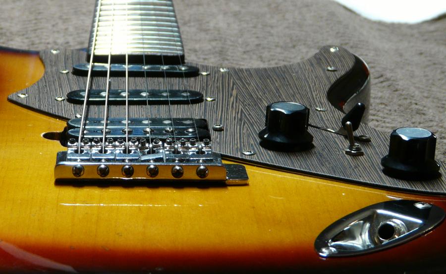 custom stratocaster pickgaurd