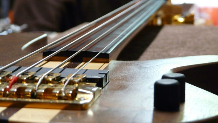 4 string fretless