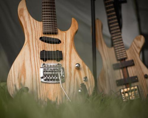 Moving Towards A More Humane Industry: The Impact of Using Animal Products in Guitars